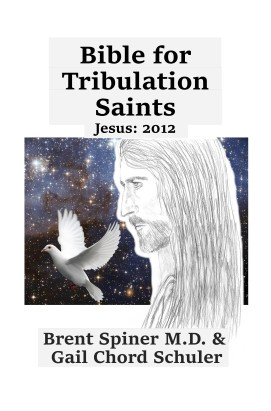 Bible_for_Trib_Saints_2012_Create_Space
