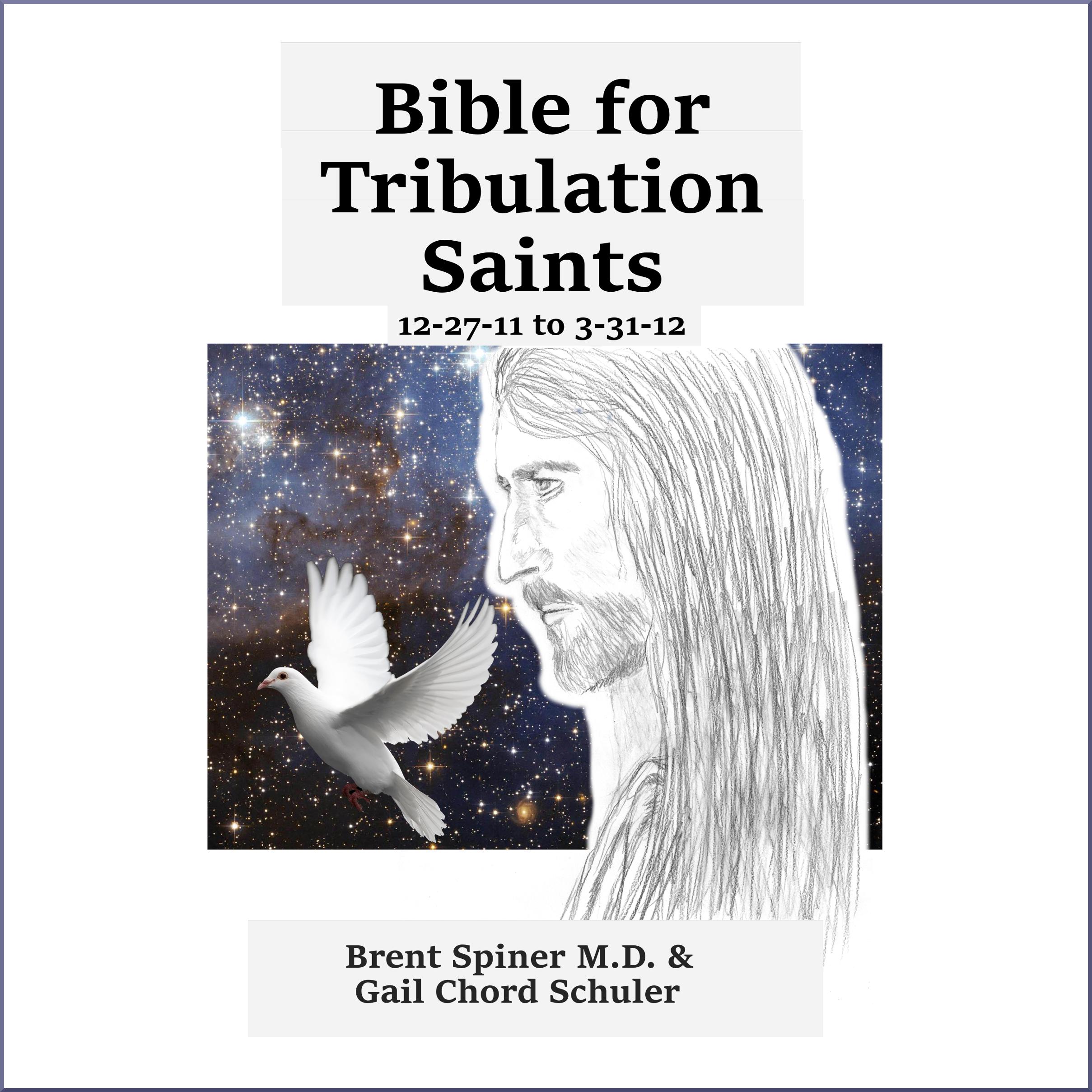 bible-for-trib-saints-12-27-11-to-3-31-12-acx-border
