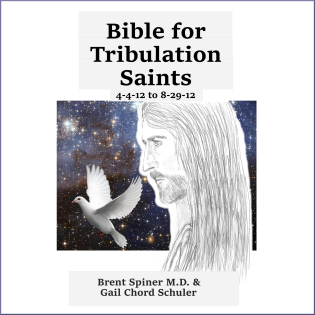 bible-for-trib-saints-4-4-12-to-8-29-12-acx-border