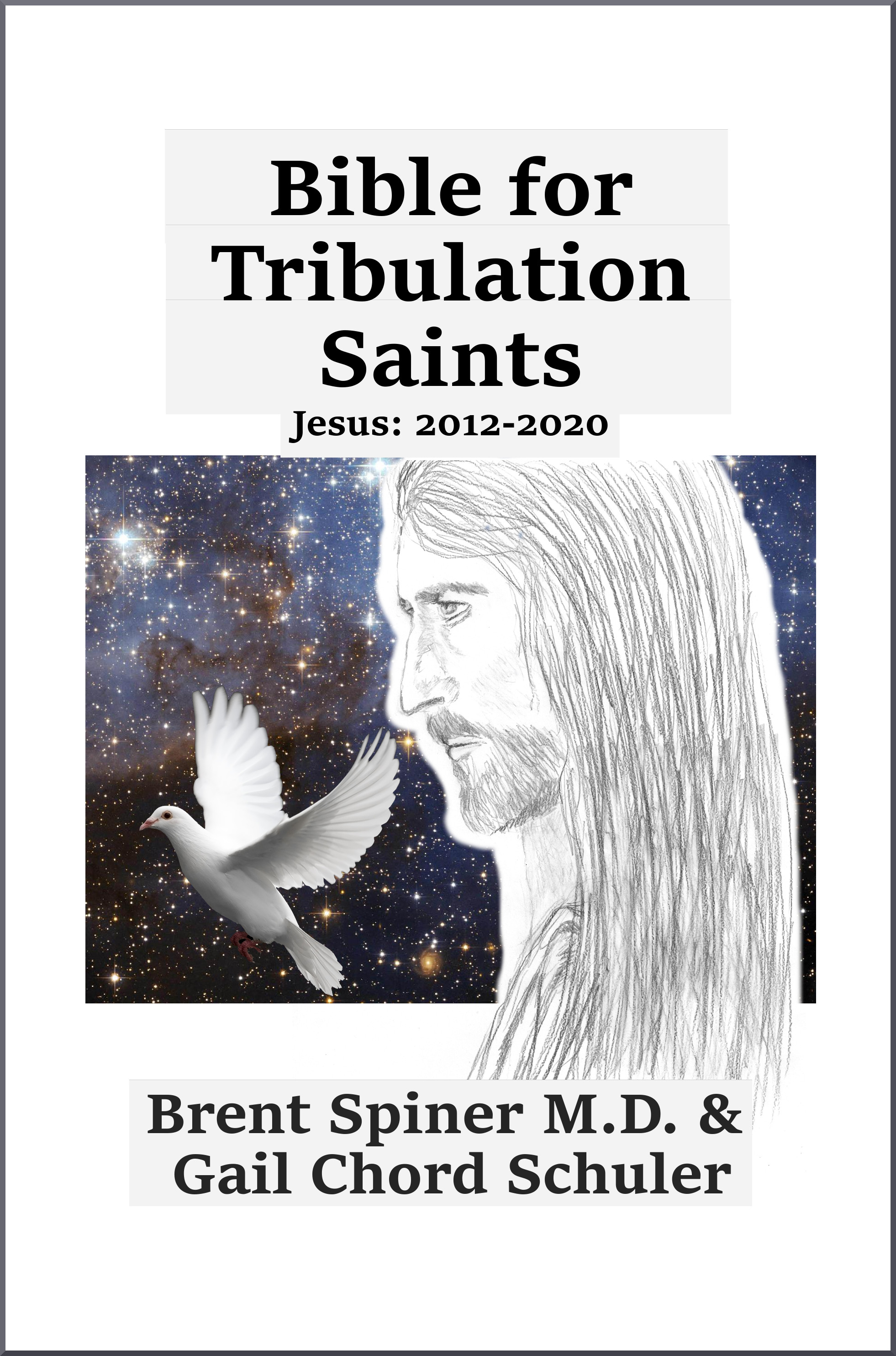 bible-for-trib-saints-2012-2020-create-space