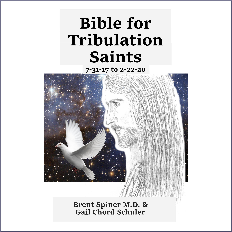 Bible for Trib Saints 7-31-17 to 2-22-20 ACX border